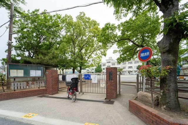 上小岩小学校(徒歩3分/約210m)